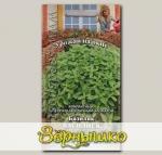Базилик Василиск, 0,3 г Урожай на окне