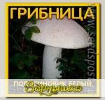 Грибница субстрат микоризный Подосиновик Белый, 1 л