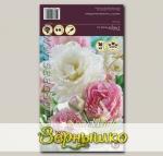 Тюльпан махровый поздний ANGELIQUE/MOUNT TACOMA MIXED, 20 шт.