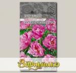 Портулак Счастливый час Пепперминт, 5 шт. PanAmerican Seeds Профессиональные семена