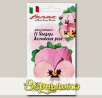 Виола Пандора Английская Роза, 5 шт. Farao Итальянские сорта и гибриды