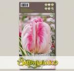 Тюльпан попугайный SILVER PARROT, 8 шт.