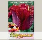 Тюльпан бахромчатый VALERY GERGIEV, 10 шт.