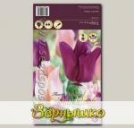 Тюльпан простой ранний SALMON PRINCE/PURPLE PRINCE, 20 шт.
