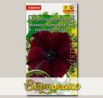 Комплиментуния крупноцветковая Винно-Красная F1, 10 шт.
