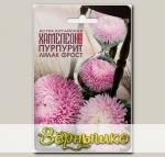 Астра китайская Хамелеон SELECT Пурпурит Лилак Фрост, 40 шт.