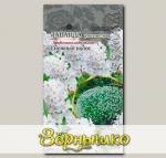 Лаванда узколистная Снежный колос, 5 шт. PanAmerican Seeds Профессиональные семена