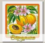 Прихватка Ягоды-фрукты (абрикос)