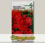 Пенстемон Тубулар Белс Красный, 12 шт. Selekt