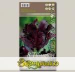 Тюльпан попугайный BLACK PARROT, 8 шт.