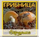 Грибница субстрат микоризный Масленок Лиственничный, 1 л
