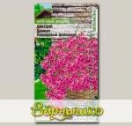 Диасция ампельная Диамонт Лавандовый фейерверк, 5 шт. PanAmerican Seeds Ампельные Шедевры