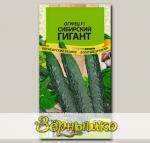 Огурец Сибирский Гигант F1, 10 шт.