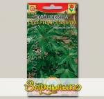 Клещевина Северная пальма, 5 шт.