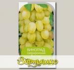 Виноград ВОСТОРГ, 1 шт.