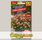 Бегония зеленолистная Сенсация Розовая F1, 7 шт. Cerny