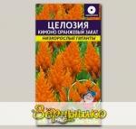 Целозия Перистая Кимоно Оранжевый закат, 10 шт. Низкорослые гиганты