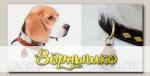 Ультразвуковой отпугиватель клещей TickLess Pet (Для домашних животных)