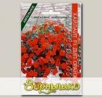 Импатиенс (бальзамин) ампельный Хайлайт Дип Оранж F1, 10 шт.
